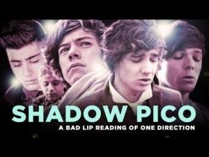 shadow pico